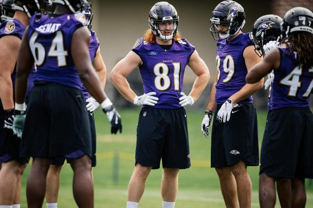 quality design aa447 d16f6 5 Ways Hayden Hurst Will Impact the 2018 Baltimore Ravens ...